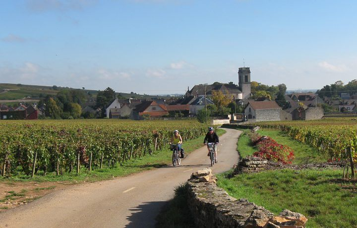Os vinhos franceses são diferentes dos nacionais? e vinhos franceses sao melhores