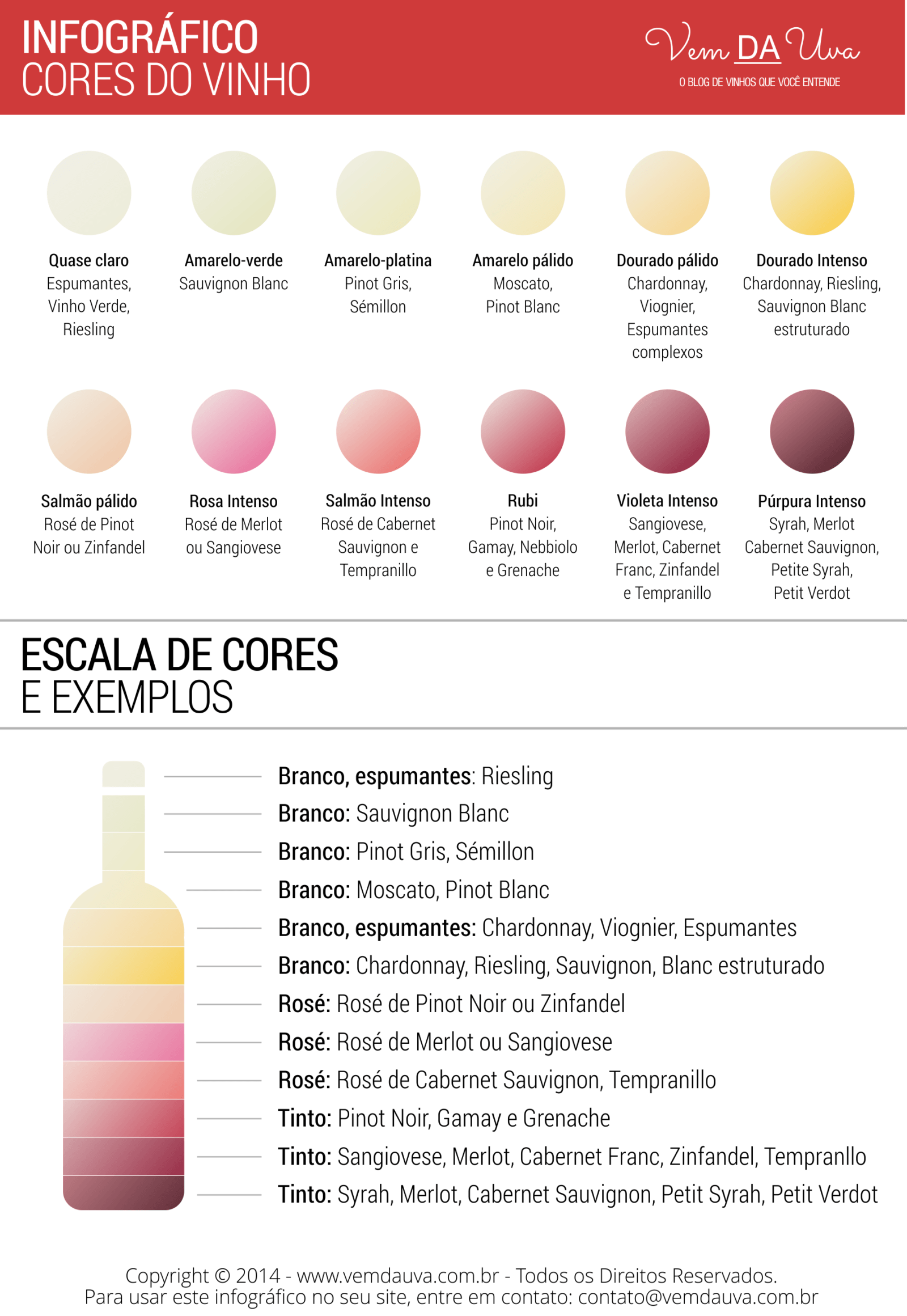 Infografico Cores png
