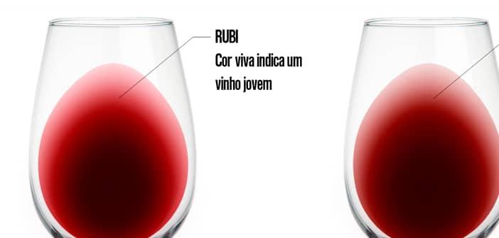 Como fazer a Análise Visual do vinho (Parte 1/3) e Cor do Vinho