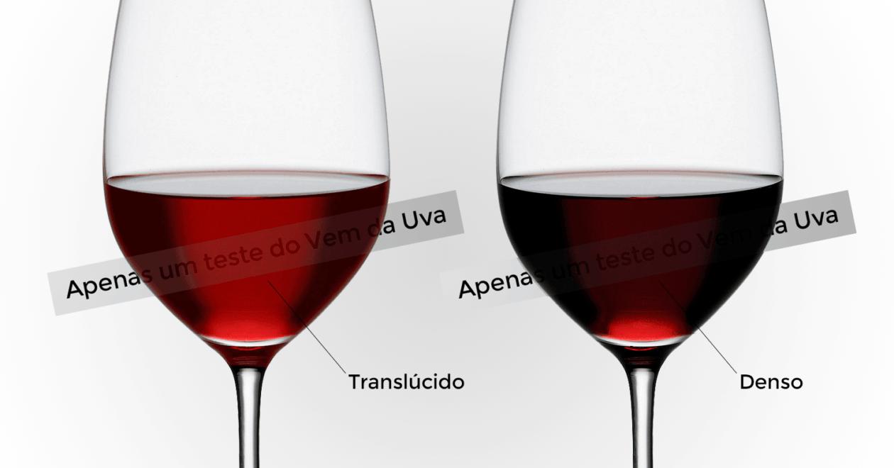 Vinho para o Verão: como escolhe rum bom vinho para dias de calor?