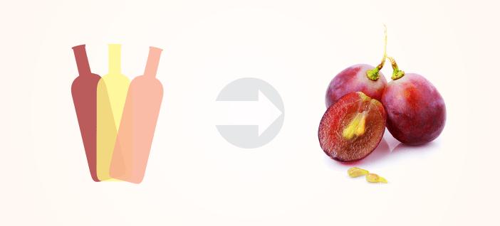 Tanino em Cada Tipo de Vinho