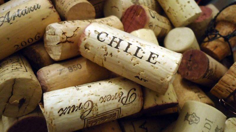 Como-o-vinho-chileno-ficou-famoso_1-800x450.jpg