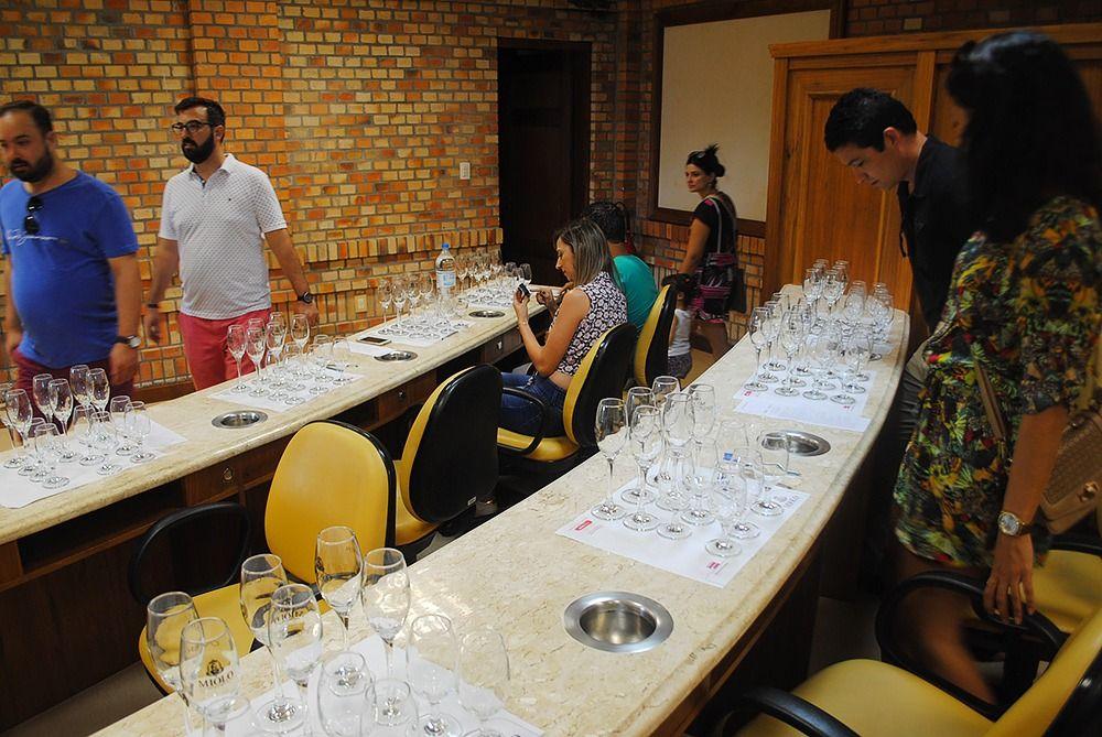 Degustação de Vinhos Visita Miolo