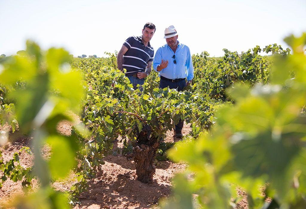 Casa Rio Verde faz degustação dirigida de vinhos Volver em BH