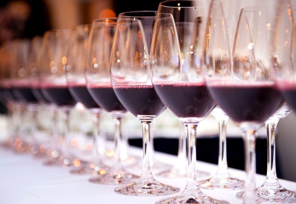 vinho para iniciantes