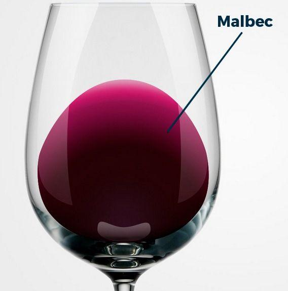 Quais as características de um vinho Malbec?
