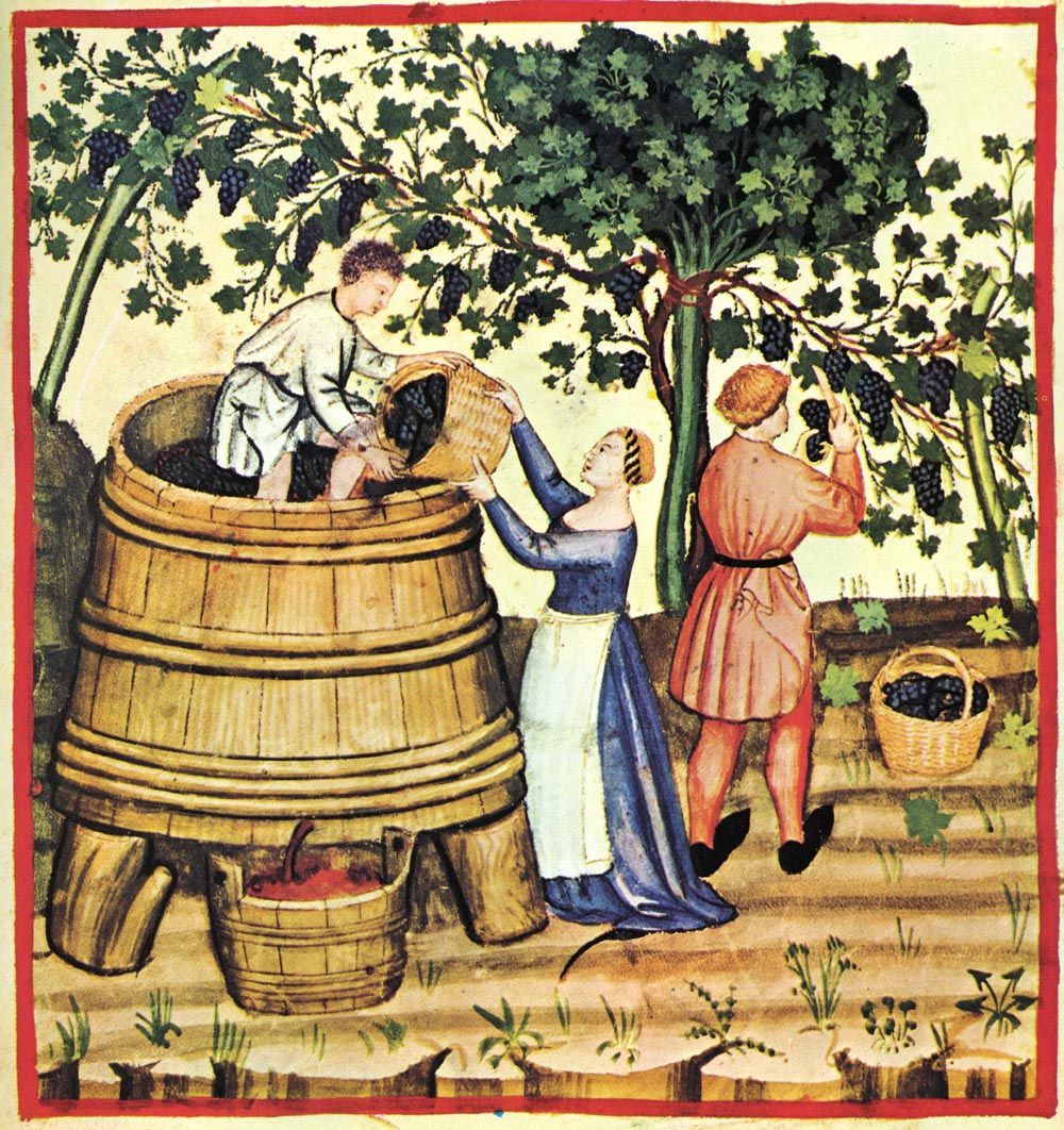 historia-do-vinho-2.jpg