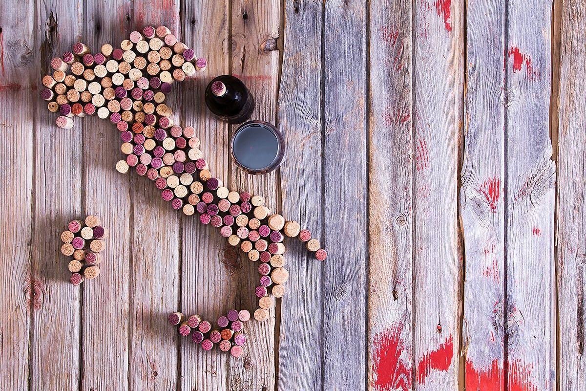 Degustação de vinho horizontal e vertical (aprenda a diferença)