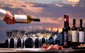 Tipos de Vinhos - Malbec, Merlot, Tannat, Cabernet Sauvignon, Syrah, Pinot Noir? e tipos de vinho