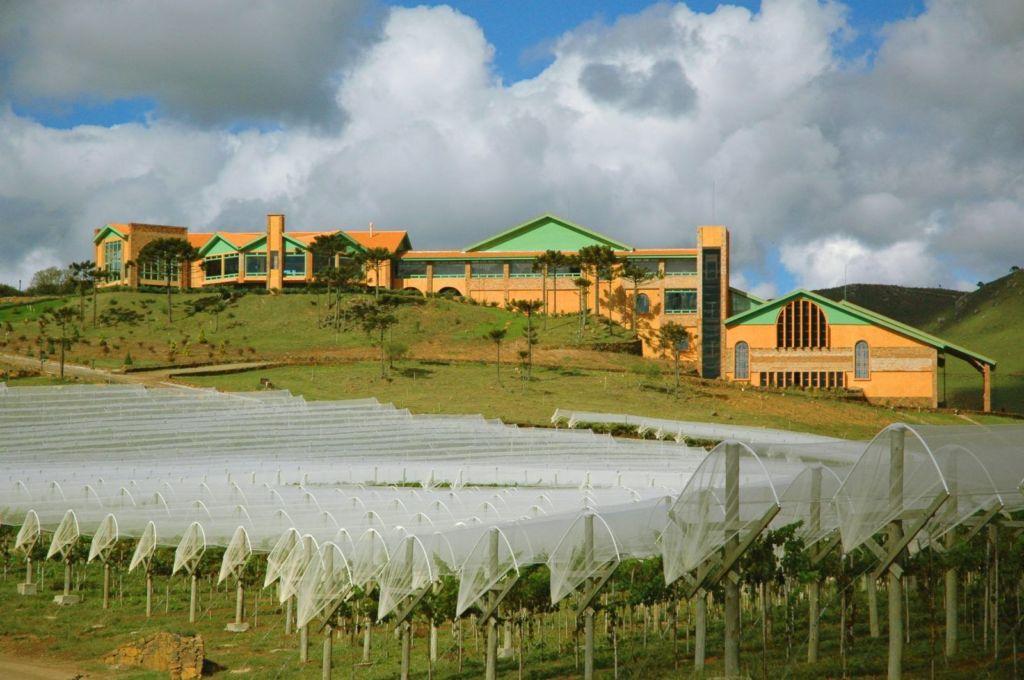 Villa Francioni na contagem regressiva para início da colheita 2018