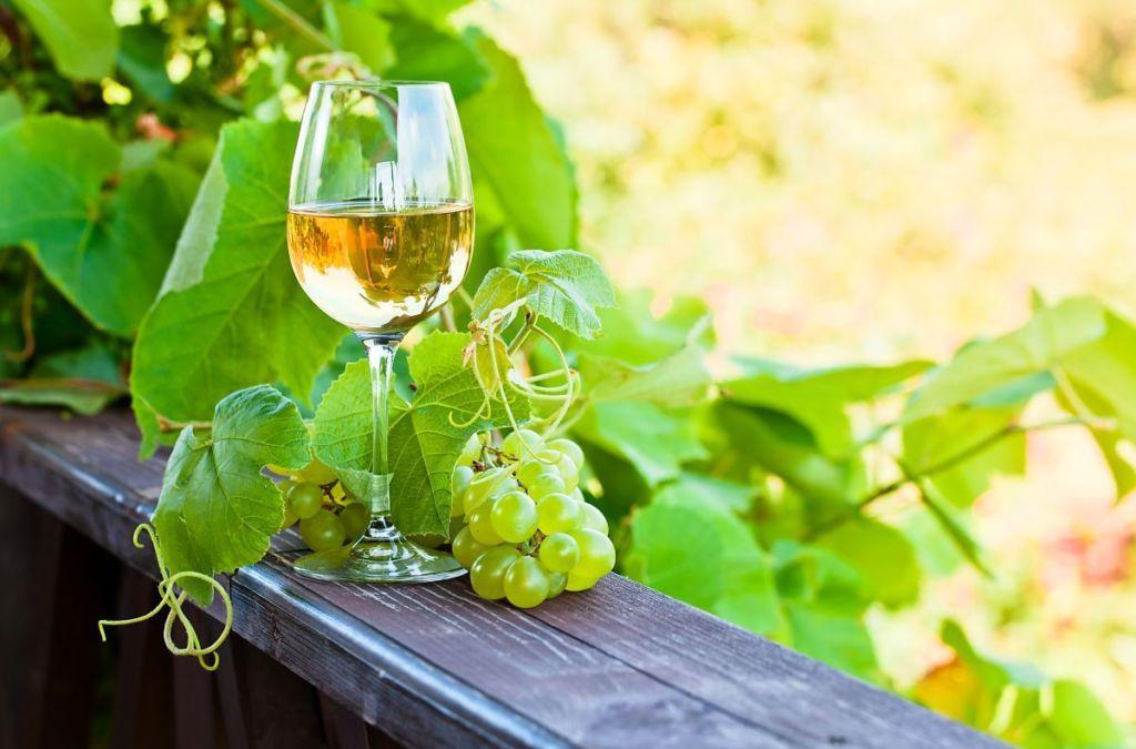 vinho-verde-capa-2-1024x675.jpg