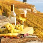 Conheça o Vinho Branco: As 12 principais uvas de vinho branco
