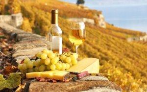 uvas-de-vinho-branco-300x188.jpg