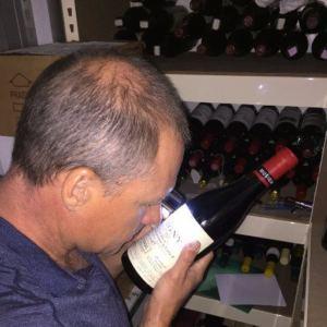 vinho falsificado
