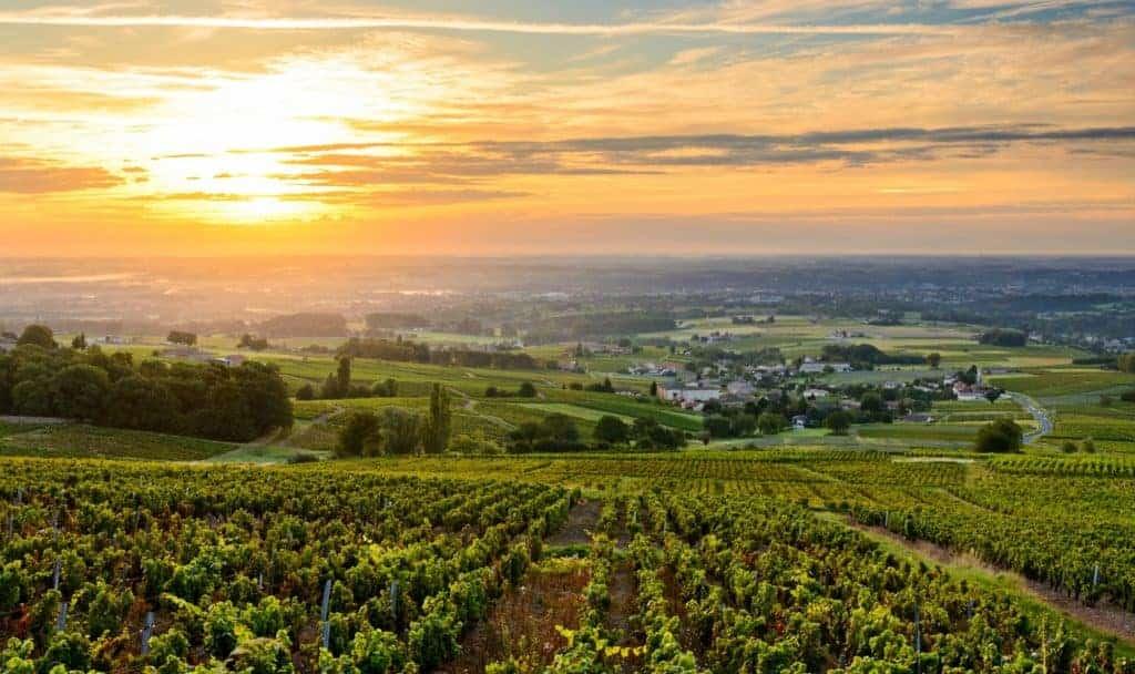 Beaujolais_Valley_sunset-1024x608.jpg