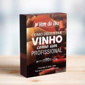 Guia: Como Degustar Vinho Como um Profissional