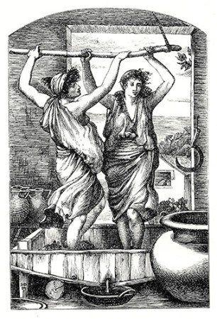 A História do Vinho: Tudo Em Uma Única Postagem