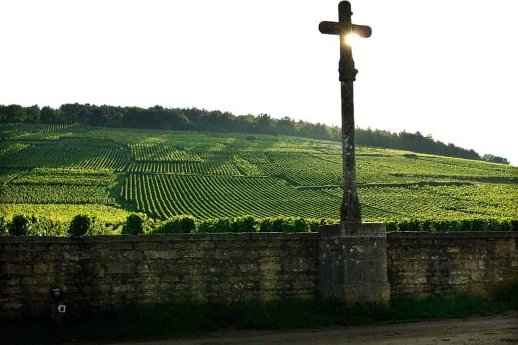 Vinhos da Borgonha: Descubra Essa Região Francesa