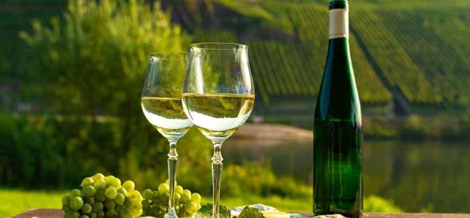 vinho-e-uva-riesling-968x450.jpg